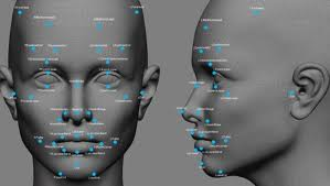 Facial Recognition Available To Police And Public Through Picasa