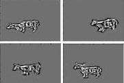 When Computers Imagine Cows