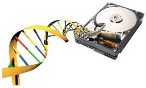 DNA Is the Best Hard Drive on Earth