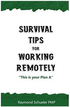 book survival tips for working remotely